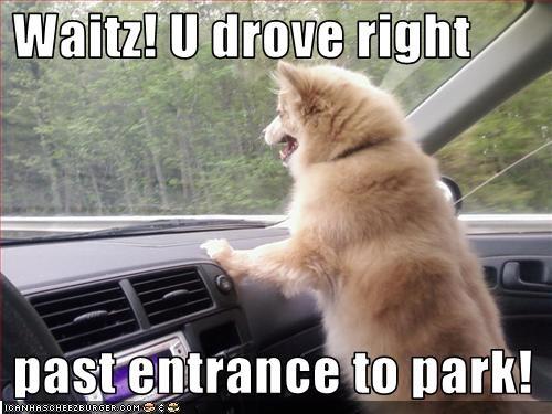 Waitz! U drove right    past entrance to park!