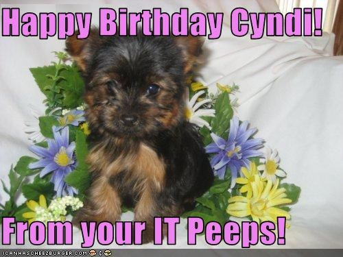 Happy Birthday Cyndi!  From your IT Peeps!