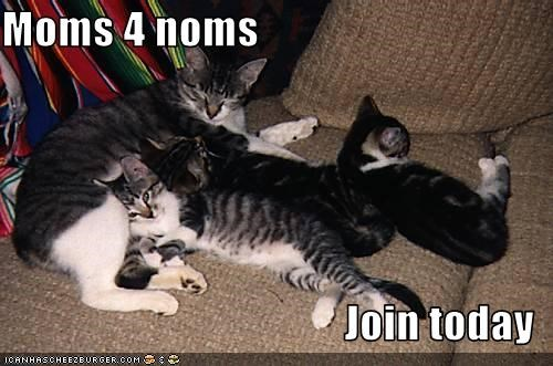 Moms 4 noms  Join today
