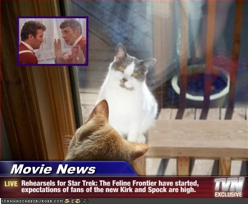 Movie News - Rehearsels for Star Trek: The Feline Frontier have started, expectations of fans of the new Kirk and Spock are high.