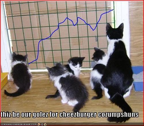 thiz be our golez for cheezburger cozumpshuns