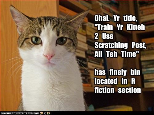 "Ohai.   Yr   title,    ""Train   Yr   Kitteh 2   Use   Scratching   Post, All   Teh   Time""    has   finely   bin located   in   R fiction   section"