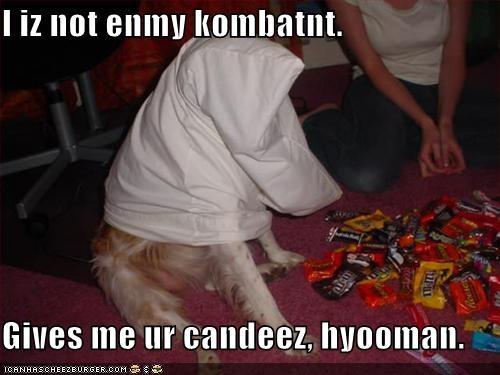 I iz not enmy kombatnt.  Gives me ur candeez, hyooman.