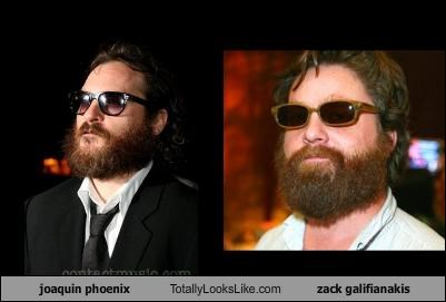 joaquin phoenix Totally Looks Like zack galifianakis