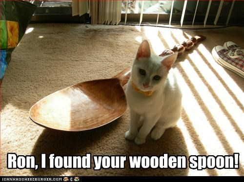 Ron, I found your wooden spoon!