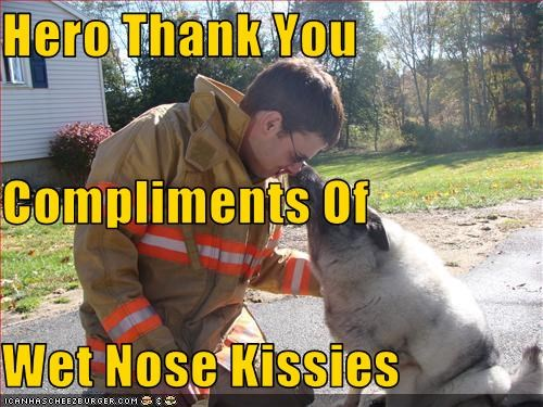Hero Thank You Compliments Of Wet Nose Kissies