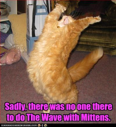 Sadly, there was no one there to do The Wave with Mittens.