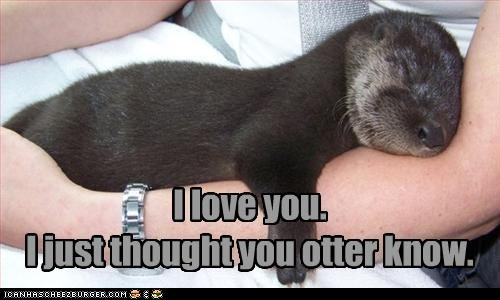 I love you. I just thought you otter know.
