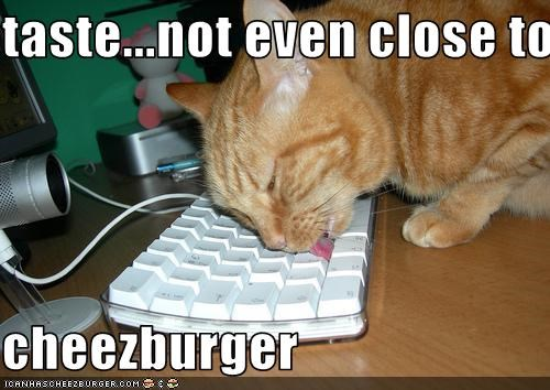 taste...not even close to  cheezburger