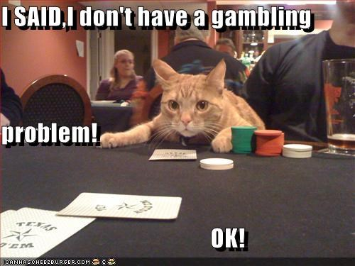 I SAID,I don't have a gambling problem!                                            OK!