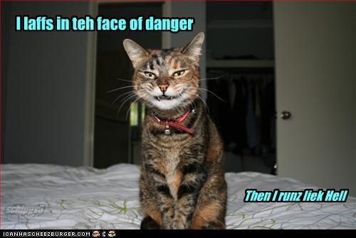 I laffs in teh face of danger
