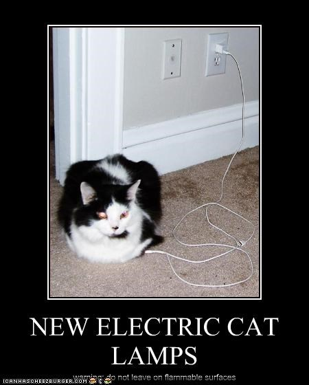 NEW ELECTRIC CAT LAMPS