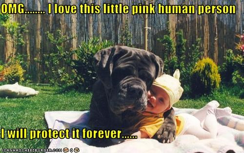 OMG........ I love this little pink human person  I will protect it forever......