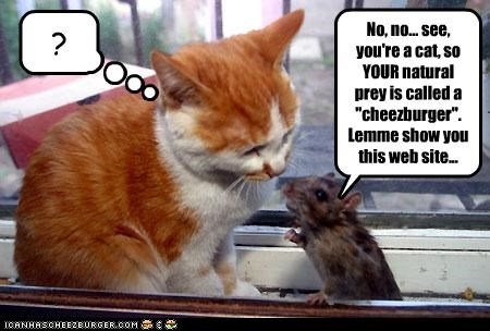 "No, no... see, you're a cat, so YOUR natural prey is called a ""cheezburger"". Lemme show you this web site..."