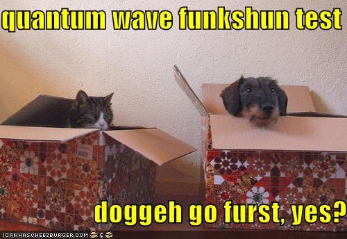 quantum wave funkshun test                    doggeh go furst, yes?