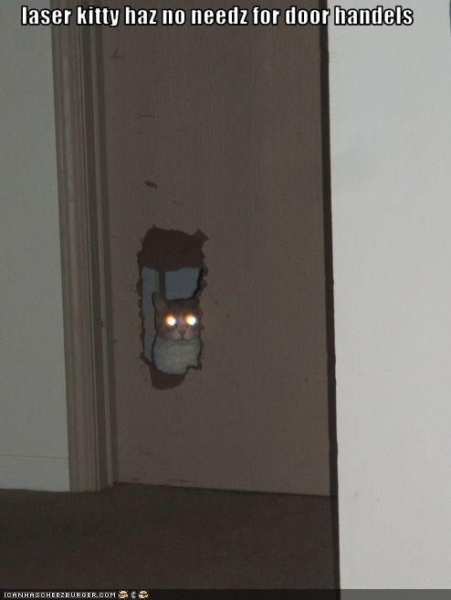 laser kitty haz no needz for door handels