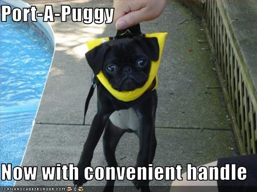 Port-A-Puggy  Now with convenient handle