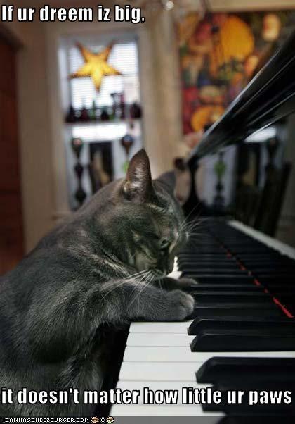 cute,dreaming,piano