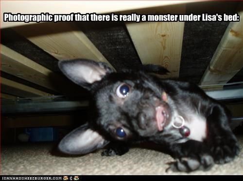 Photographic proof that there is really a monster under Lisa's bed: