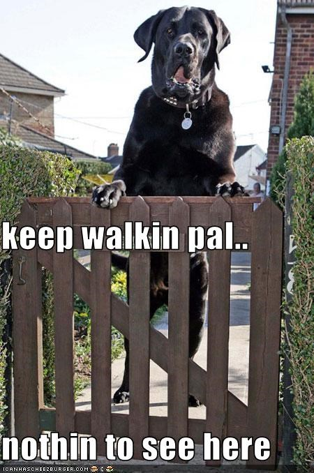 keep walkin pal.. nothin to see here