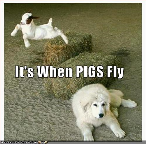 It's When PIGS Fly