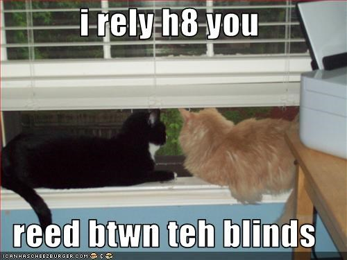 i rely h8 you  reed btwn teh blinds