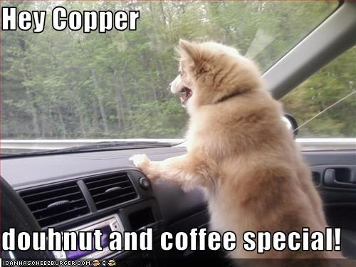 Hey Copper  douhnut and coffee special!