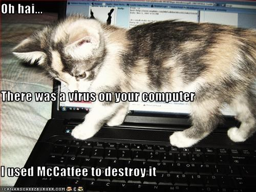 Oh hai... There was a virus on your computer I used McCatfee to destroy it