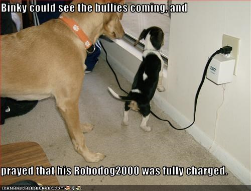 Binky could see the bullies coming, and   prayed that his Robodog2000 was fully charged.