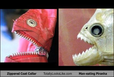 Zippered Coat Collar Totally Looks Like Man-eating Piranha