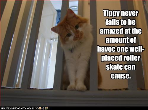 Tippy never fails to be amazed at the amount of havoc one well-placed roller skate can cause.