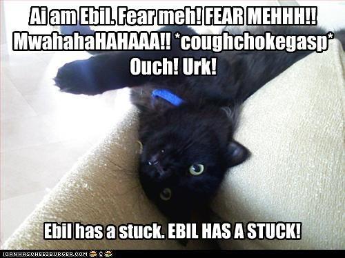 Ai am Ebil. Fear meh! FEAR MEHHH!! MwahahaHAHAAA!! *coughchokegasp* Ouch! Urk!