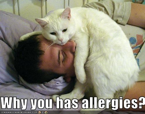 Why you has allergies?