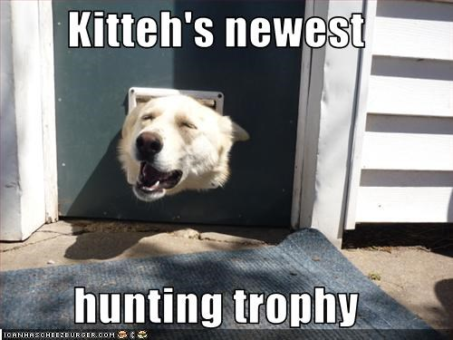 Kitteh's newest   hunting trophy