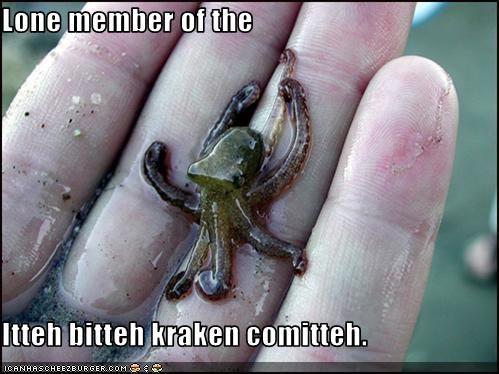 Lone member of the  Itteh bitteh kraken comitteh.