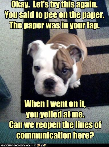 Okay.  Let's try this again. You said to pee on the paper. The paper was in your lap.