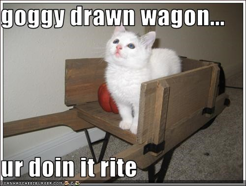 goggy drawn wagon...  ur doin it rite