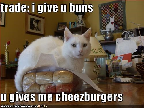 trade: i give u buns  u gives me cheezburgers