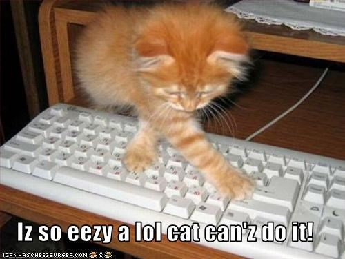 Iz so eezy a lol cat can'z do it!