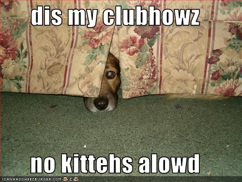 dis my clubhowz  no kittehs alowd