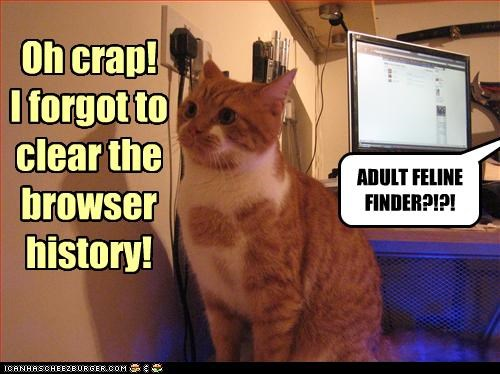 Oh crap!  I forgot to clear the browser history!