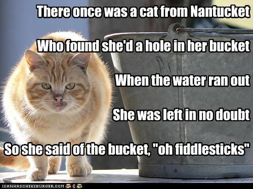 There once was a cat from Nantucket