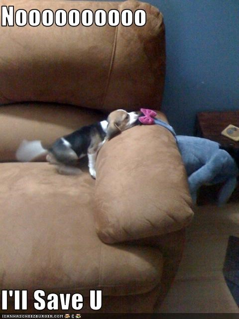 beagle,couch,eeyore,help,puppy,save,stuffed toy