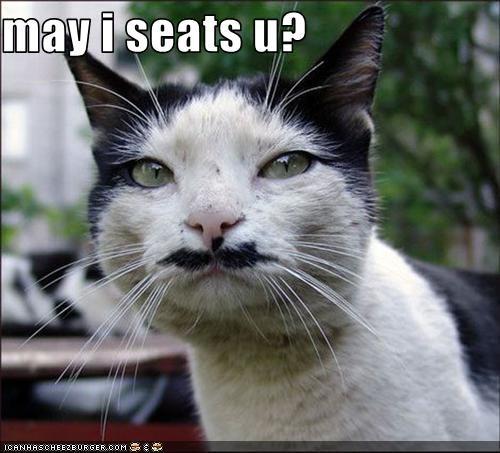 may i seats u?