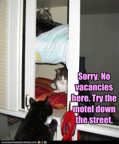 Sorry. No vacancies here. Try the motel down the street.