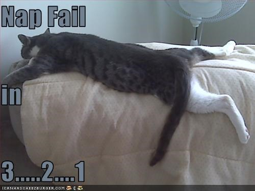 Nap Fail in  3.....2....1