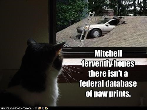 Mitchell fervently hopes there isn't a federal database of paw prints.
