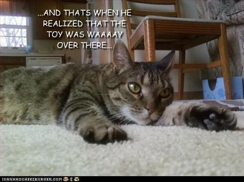 ...AND THATS WHEN HE REALIZED THAT THE TOY WAS WAAAAY OVER THERE...