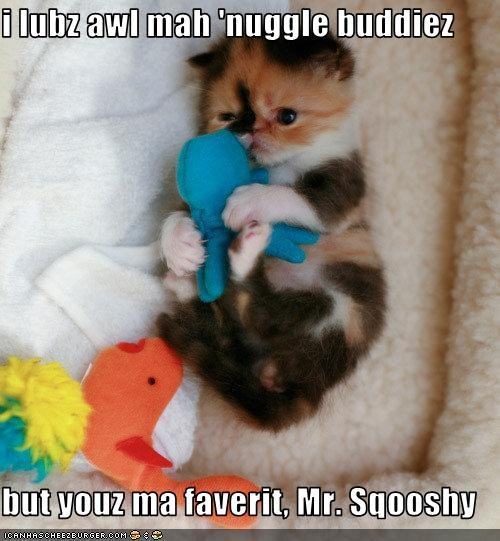 i lubz awl mah 'nuggle buddiez  but youz ma faverit, Mr. Sqooshy