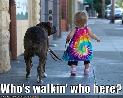 Who's walkin' who here?